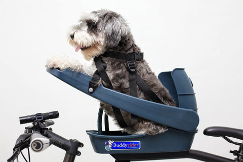 Buddy Rider Pet Seat