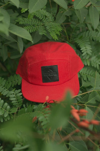 Gorra five panel lofoten headwear