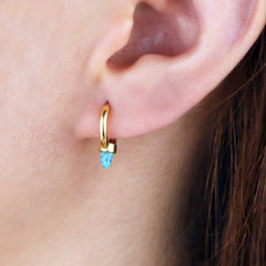 SISKIYOU HUGGIE EARRINGS