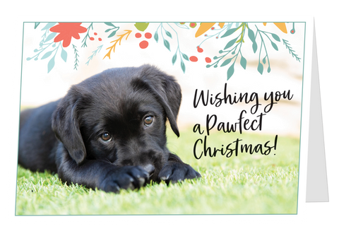 Card with black labrador puppy and 'Wishing you a pawfect Christmas' on the front.