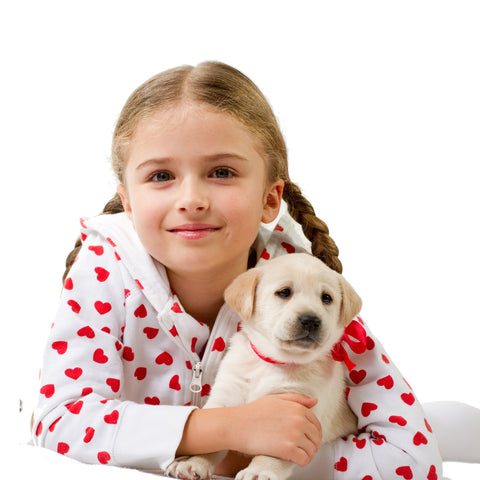 Puppy cuddle - Virtual Gift (Tax Deductible)