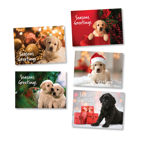 Pack of 10 Christmas Cards - Merchandise Gift