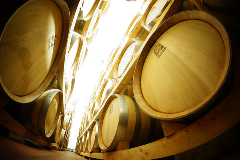 FERMENTATION PROCESS IN WINE MAKING