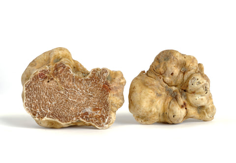 WHITE DIAMOND . WHITE TRUFFLE