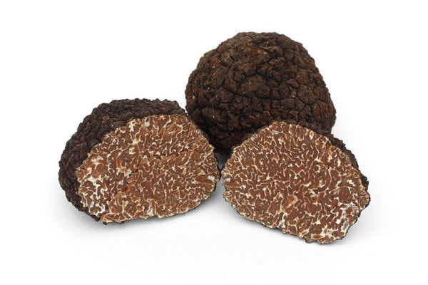 秋季黑松露 Due Maesta - Delcivino Italian Autumn black or burgundy Truffle - Hong Kong