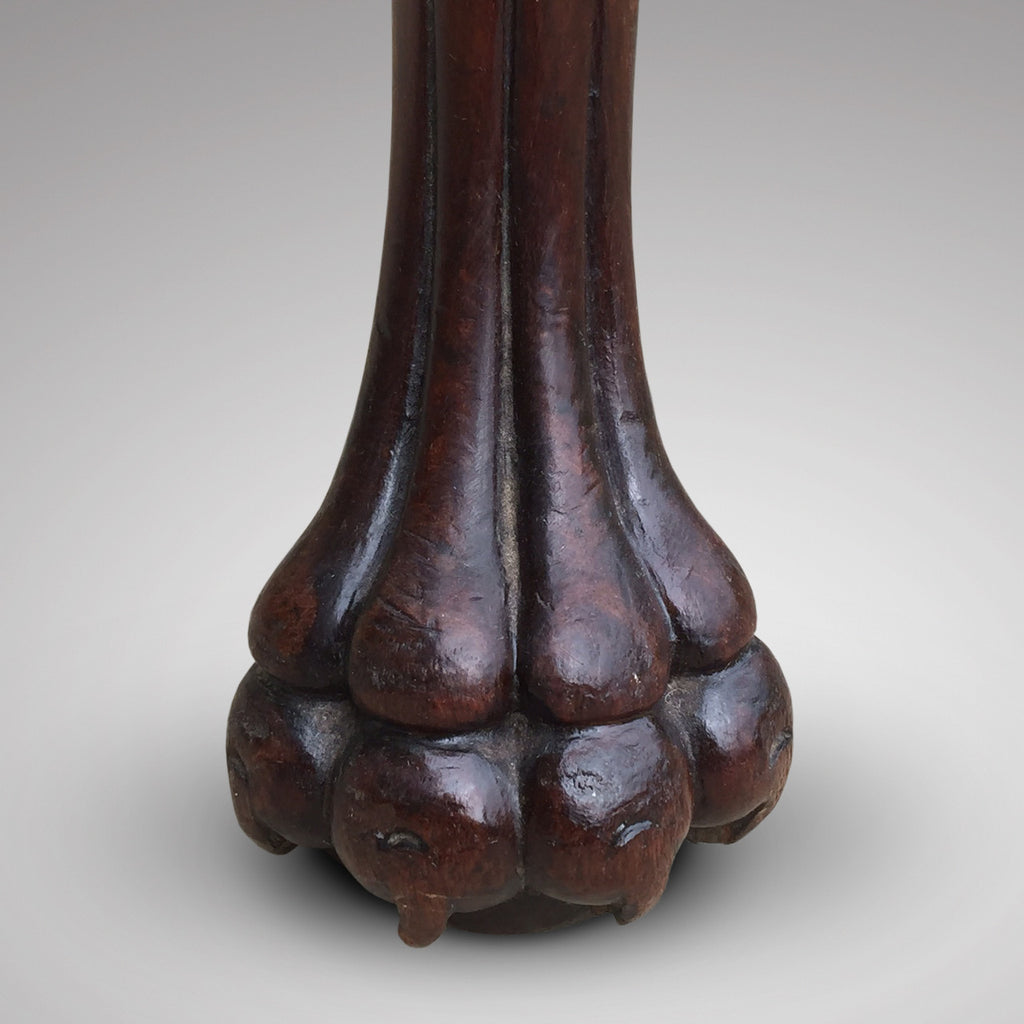 19th Century Mahogany Elbow Chair - Detail View of Paw Foot- 6