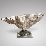 Scottish Silver Mounted Shell Table Decoration - Main View - 2