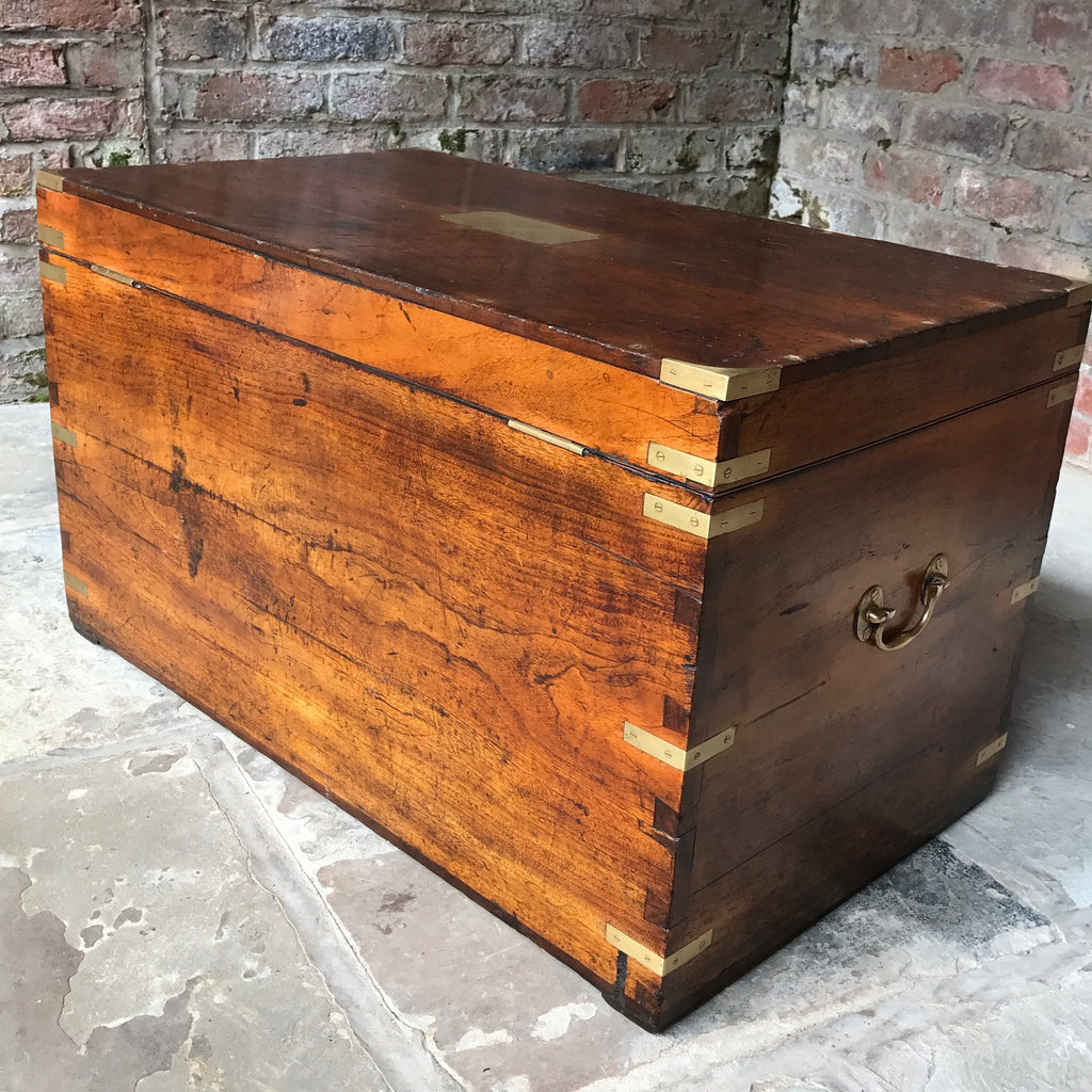 19th Century Camphor Wood Campaign Trunk - Back & side View -10