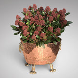 19th Century Copper Jardiniere with Lion Mask Handles - Main View - 1