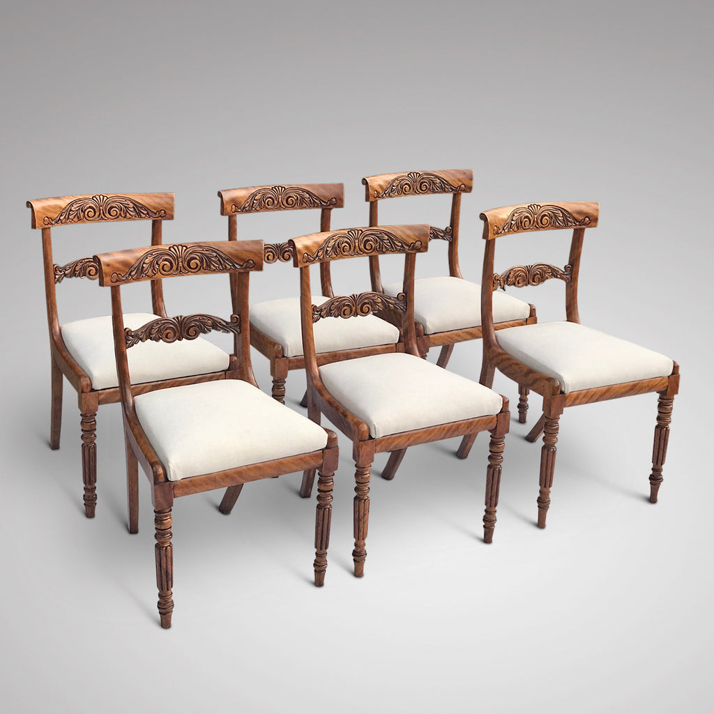 Set of 6 William IV Satin Birch Dining Chairs - Main View - 1