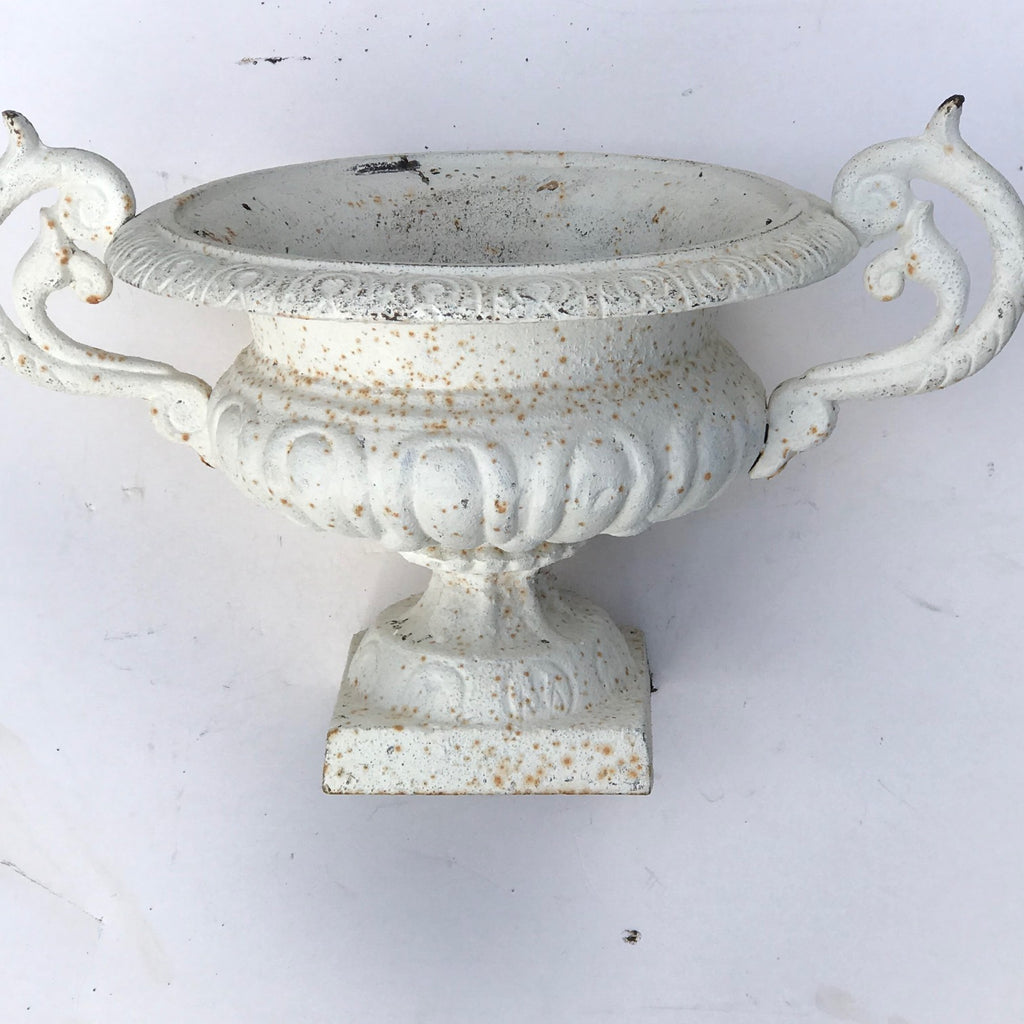 Pair of 19th Century Cast Iron Twin Handled Garden Urns - Main View - 3