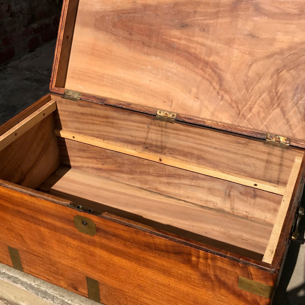 19th Century Camphor Wood Campaign Trunk - Inside View - 5