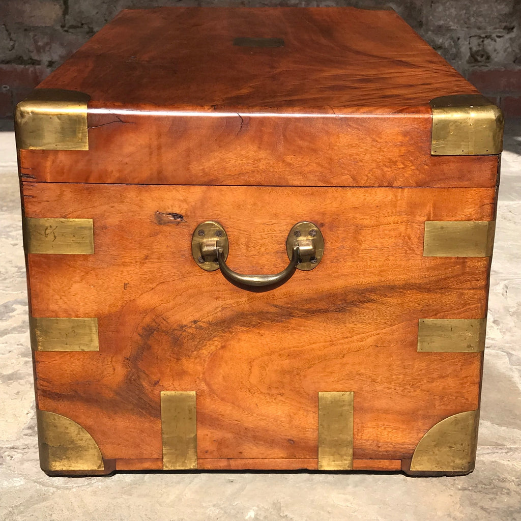 19th Century Camphor Wood Campaign Trunk Side View - 4