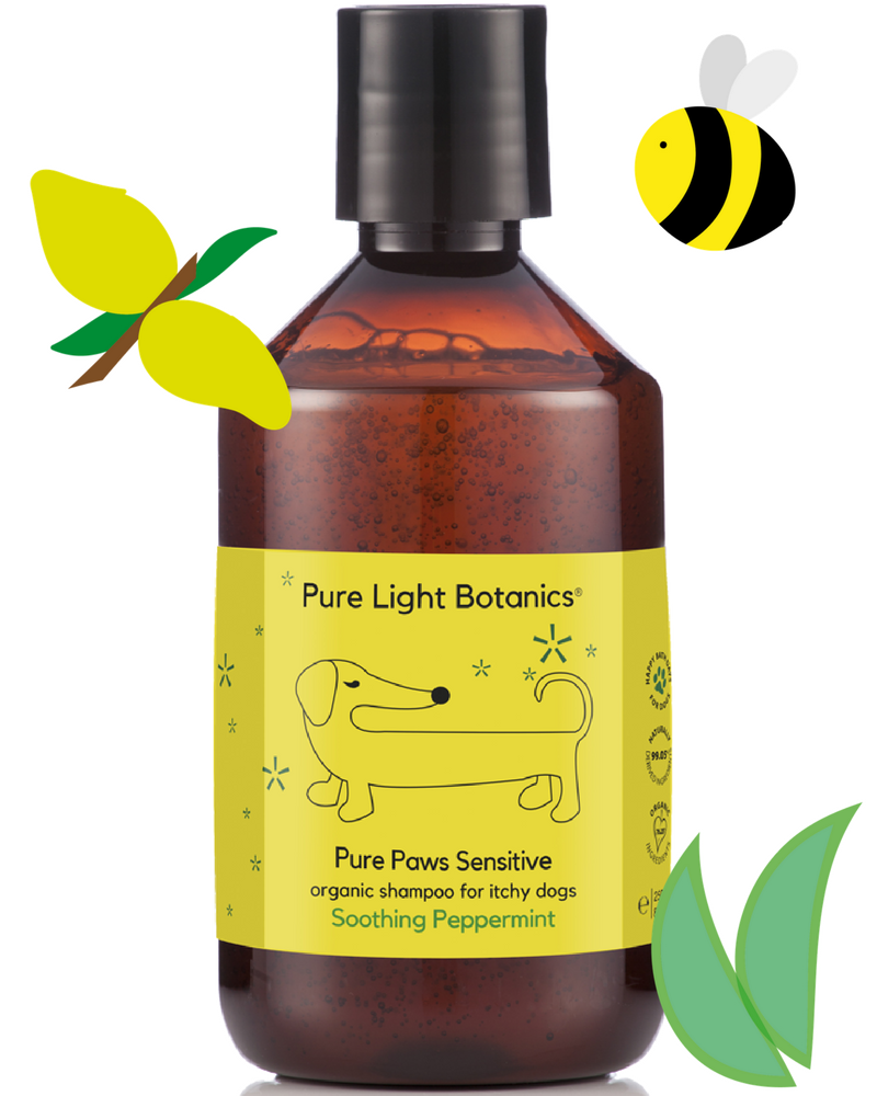 'Pure Paws' Sensitive Organic Shampoo for Itchy Dogs 250ml - Pure Light Botanics