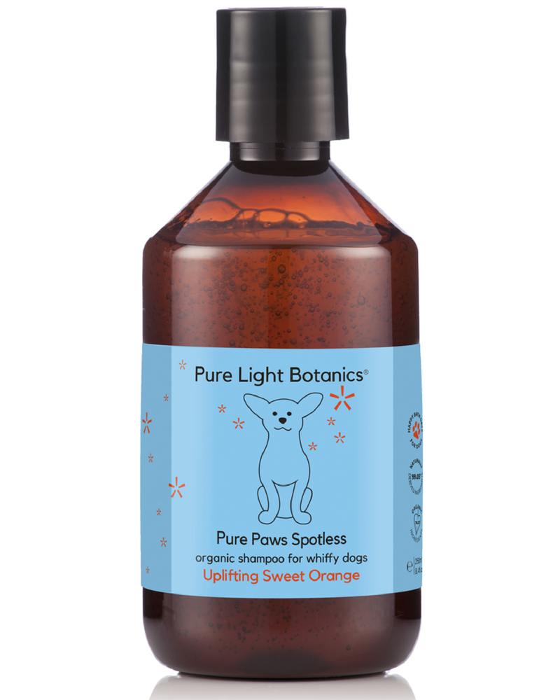 NEW 'Pure Paws' Spotless Organic Shampoo for Whiffy Dogs 250ml - Pure Light Botanics