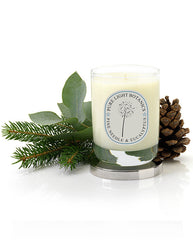 Uplifting Pine Needle & Eucalyptus Christmas Candle - Pure Light Botanics - 3