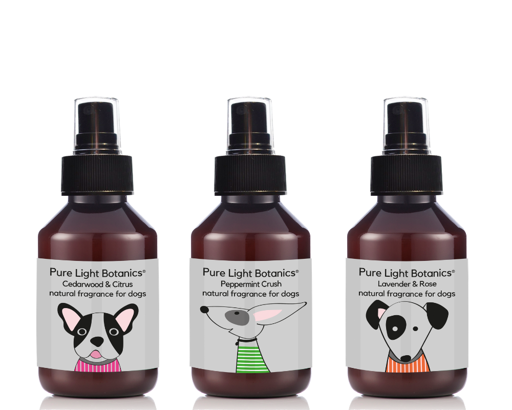 NEW Lavender & Rose Natural Fragrance for Dogs 100ml