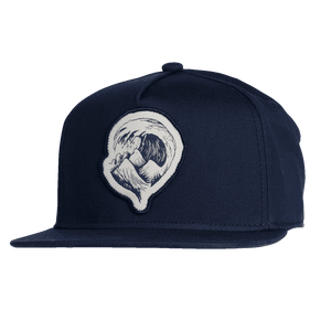 2019 Patch Series Cap