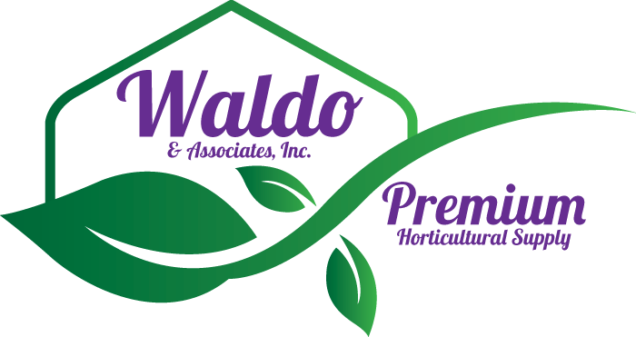 Shop at Waldo