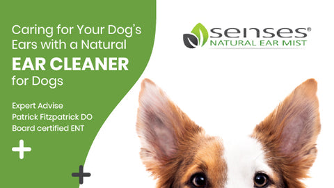 Caring for Your Dog's Ears with a Natural Ear Cleaner for Dogs
