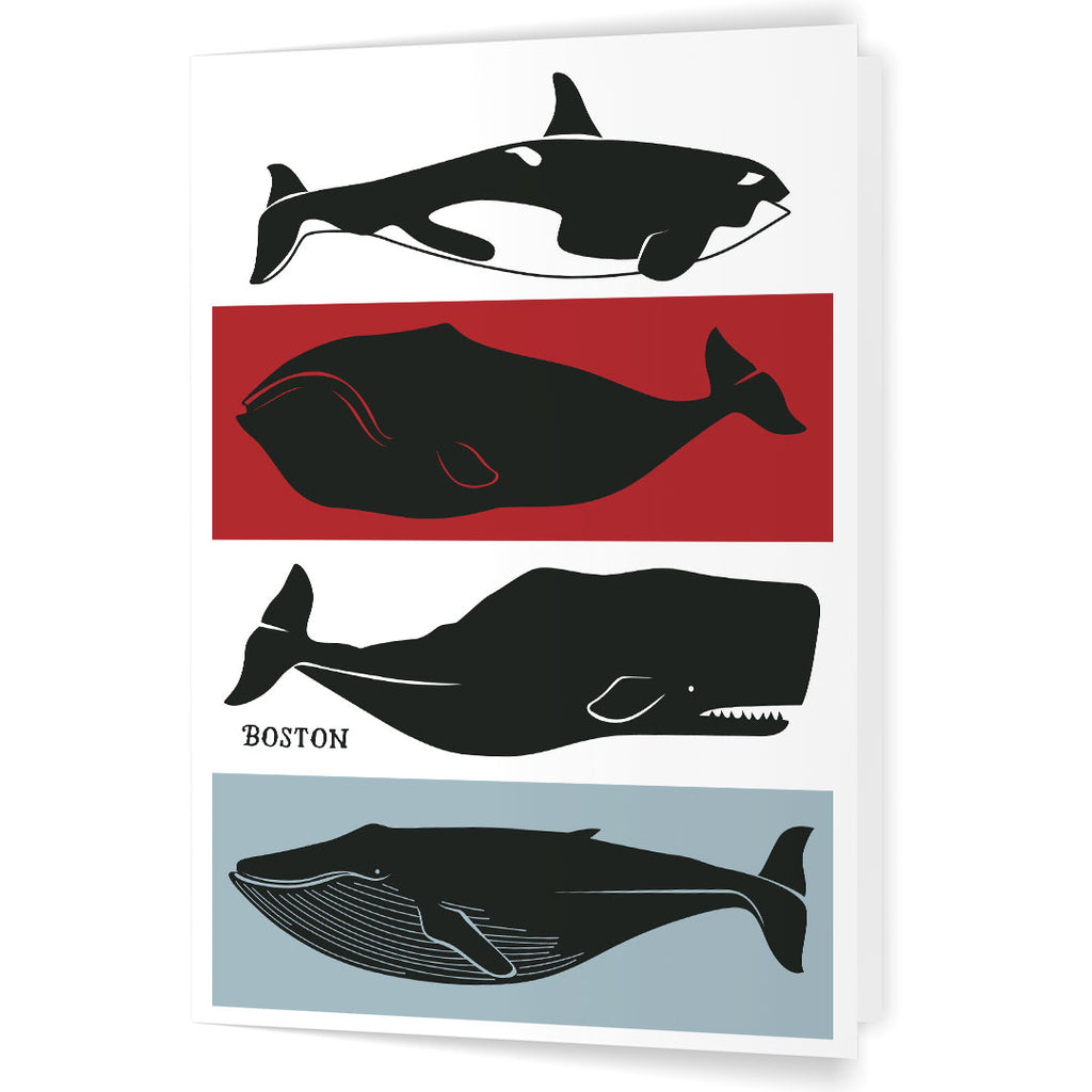 Boston Whales 5 x 7 Greeting Card