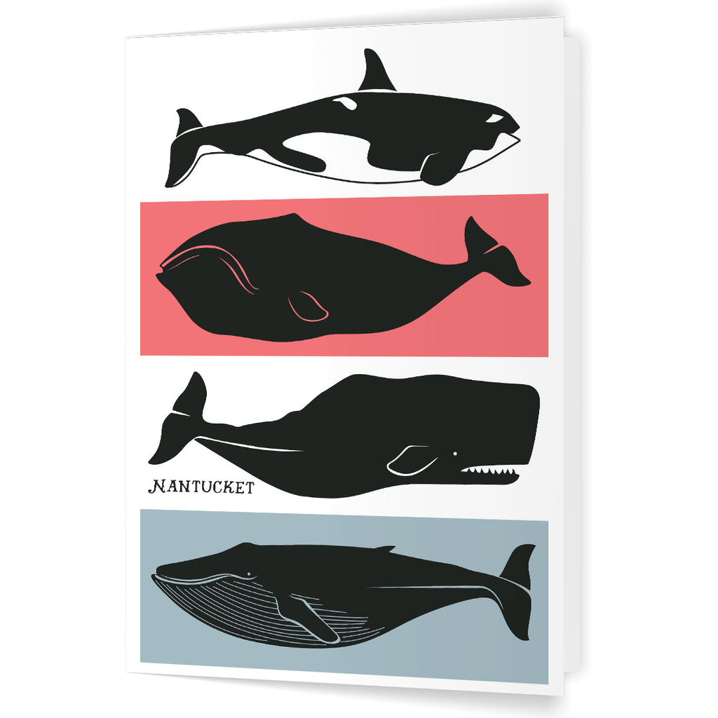 Nantucket Whales 5 x 7 Greeting Card
