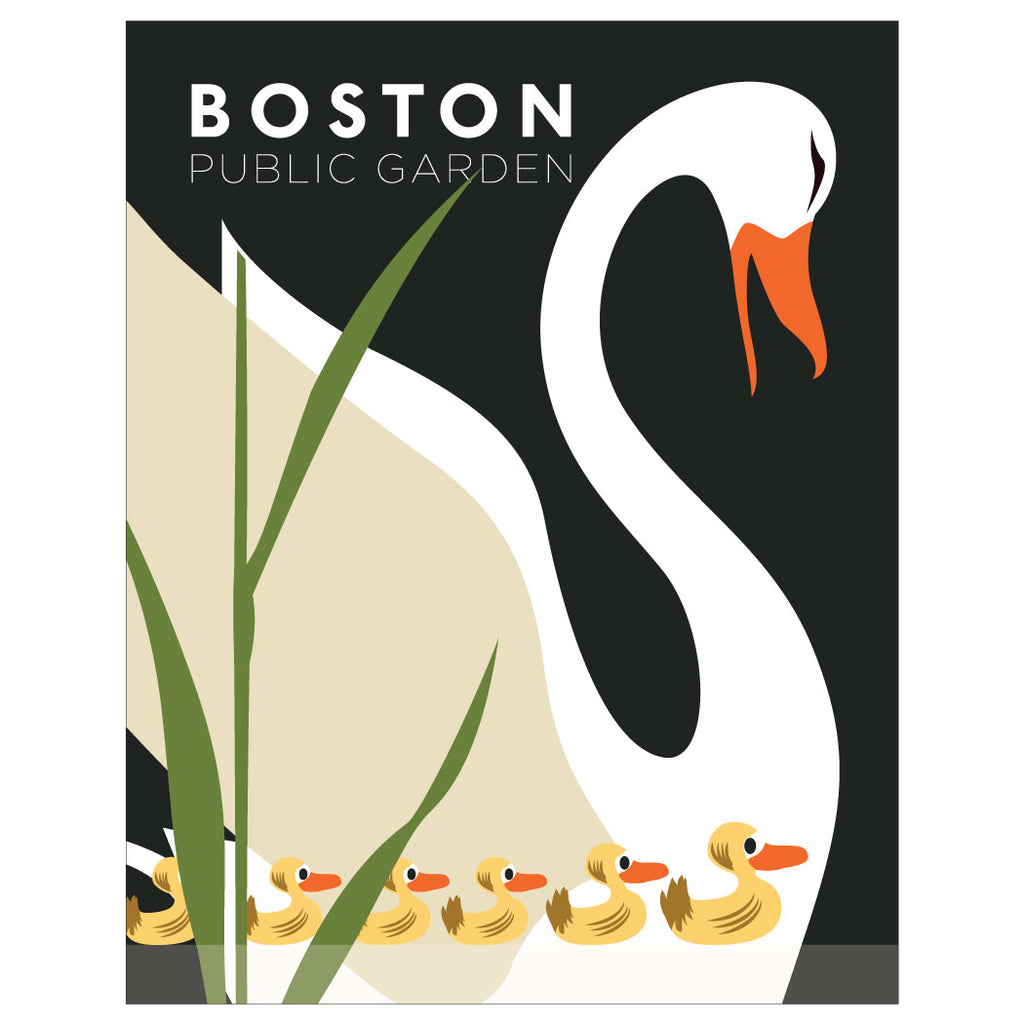 Boston Public Garden Swan & Ducklings Magnet & Greeting Card