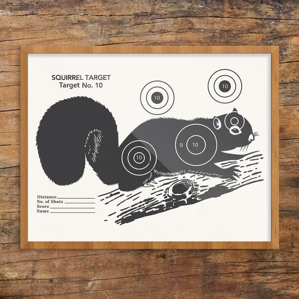 Vintage Squirrel Shooting Target Print