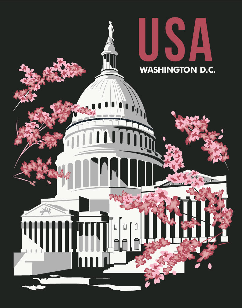 Washington DC Capital Building & Cherry Blossoms Travel Poster Magnet