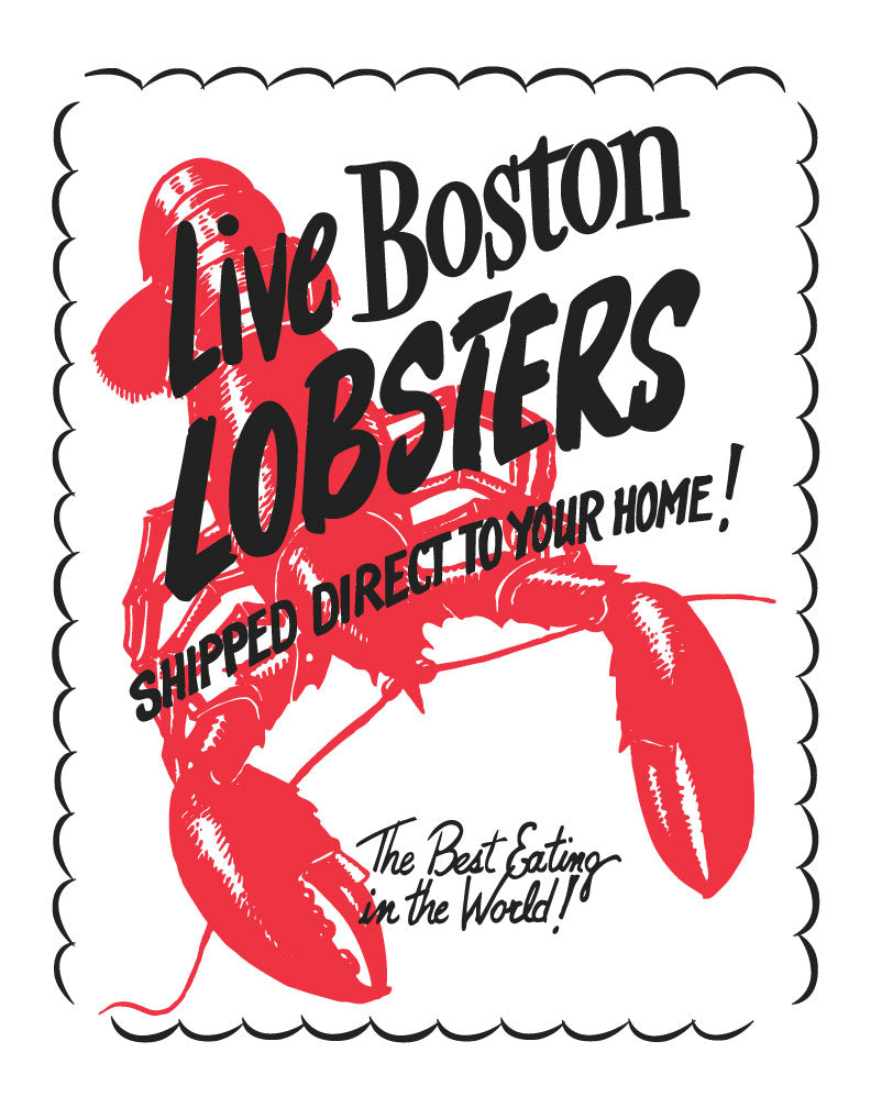 Live Boston Lobsters Magnet