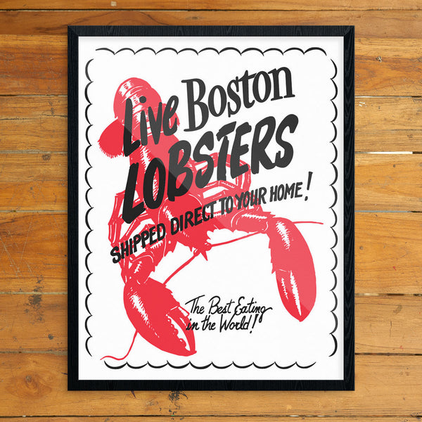 Live Boston Lobsters 11 x 14 Print