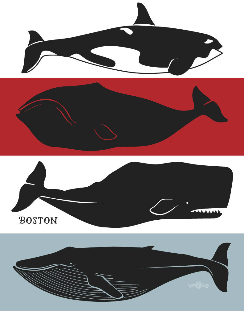 Boston Whales Magnet
