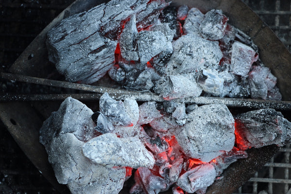 White-Hot Fogo Premium Lump Charcoal