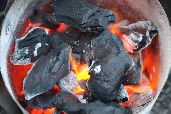 Burning Fogo Premium Lump Charcoal