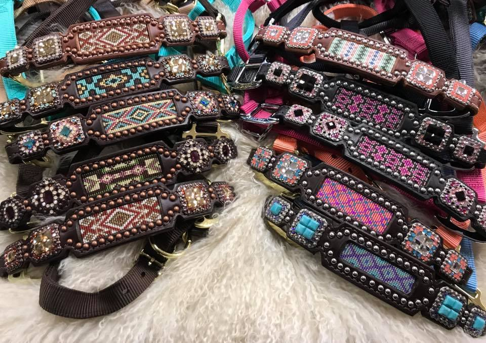 Check out our Custom Halters