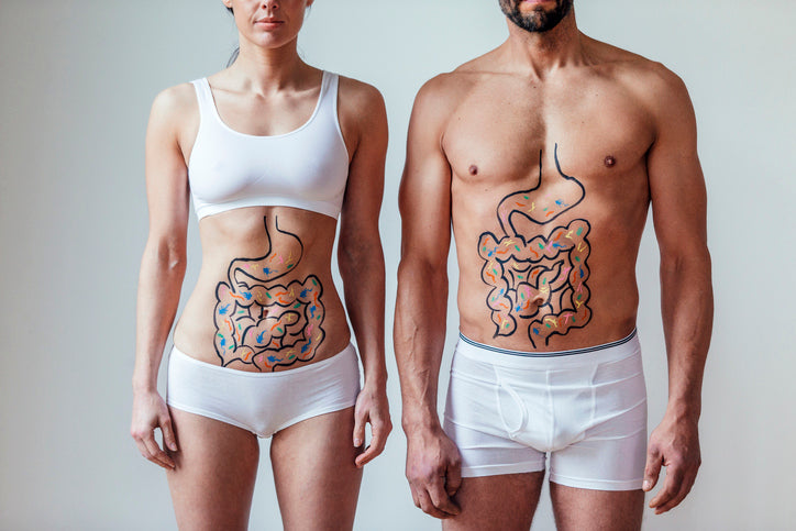 Muscle strength linked to healthy gut bacteria, says new study