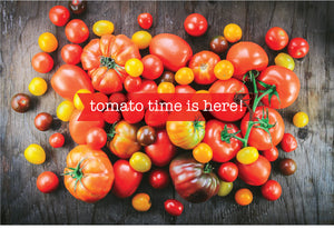 Tomato Time is Here