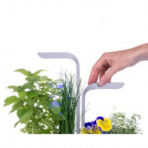 Véritable SMART Garden, Arctic White