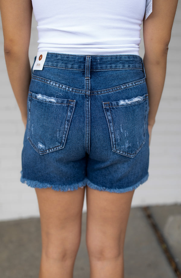 High Rise Distressed Denim Shorts