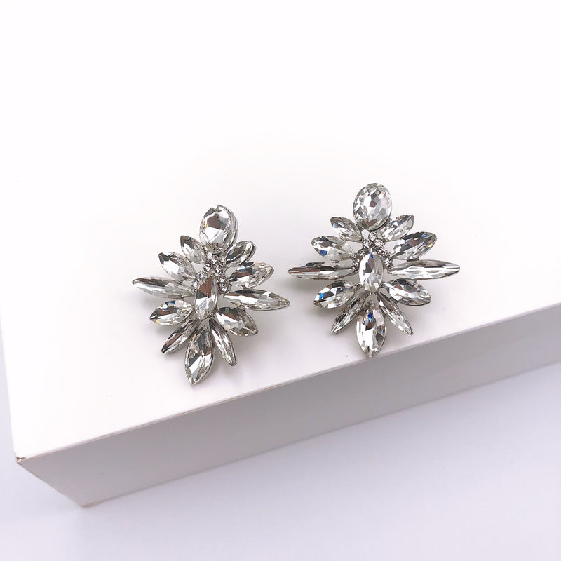 Treasure Jewels Zoe Silver Earrings