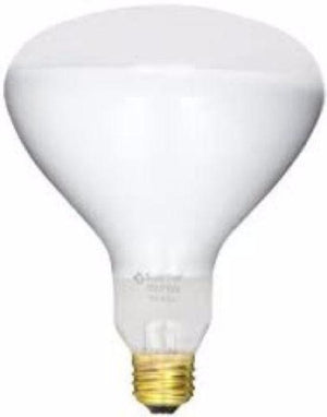 400W Pool Light Bulb 110 120 130 Volts 400 Watts Pentair Hayward Jandy Home & Garden > Lighting > Light Bulbs Hayward