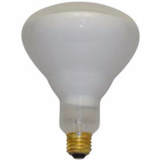 Halco 104042 R40FL500/HG Medium Base R40 Bulb, 500-watt, 120-volt Home & Garden > Lighting > Light Bulbs Halco