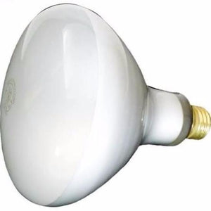 Hayward 300W 110 120V Volts Medium Base Bulb SPX0542Z4 Home & Garden > Lighting > Light Bulbs Hayward Industrial Products