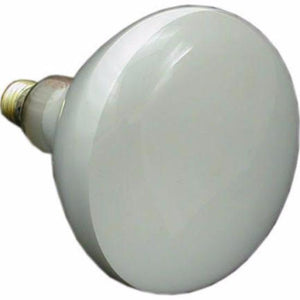 Hayward Astrolite Bulb 110 120 130 Volts 500 Watts SPX504Z7 Home & Garden > Lighting > Light Bulbs Hayward Industrial Products