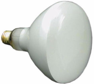 Pentair 79107600 120 Volt 300 Watt Bulb Replacement Bulb Home & Garden > Lighting > Light Bulbs Pentair