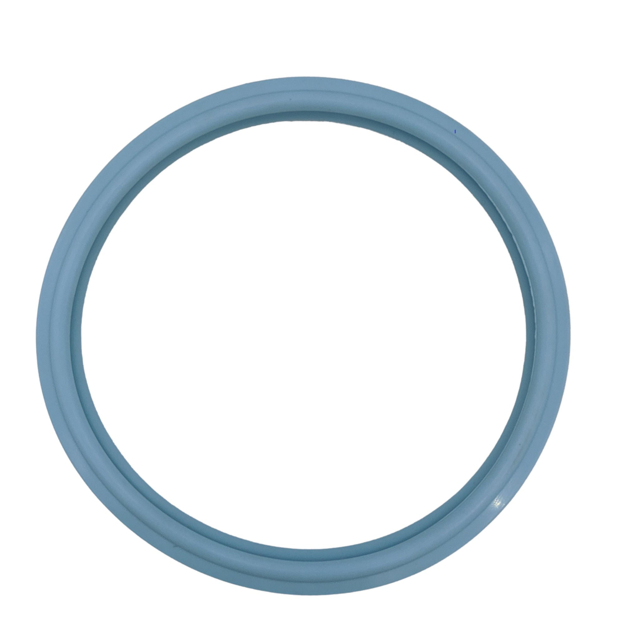 Pentair® Amerlite® Sam® Swimming Pool Light Lens Gasket O-170 79101600Z 79101600 Home & Garden > Pool & Spa Pentair