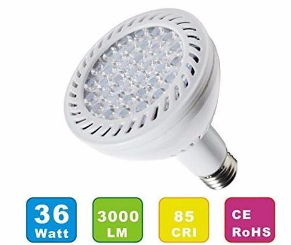 Pool Tone® White LED 110 120 Volt Bulb 35W Watts for Sta-Rite® Swimquip® Home & Garden > Lighting > Light Bulbs Pool Tone