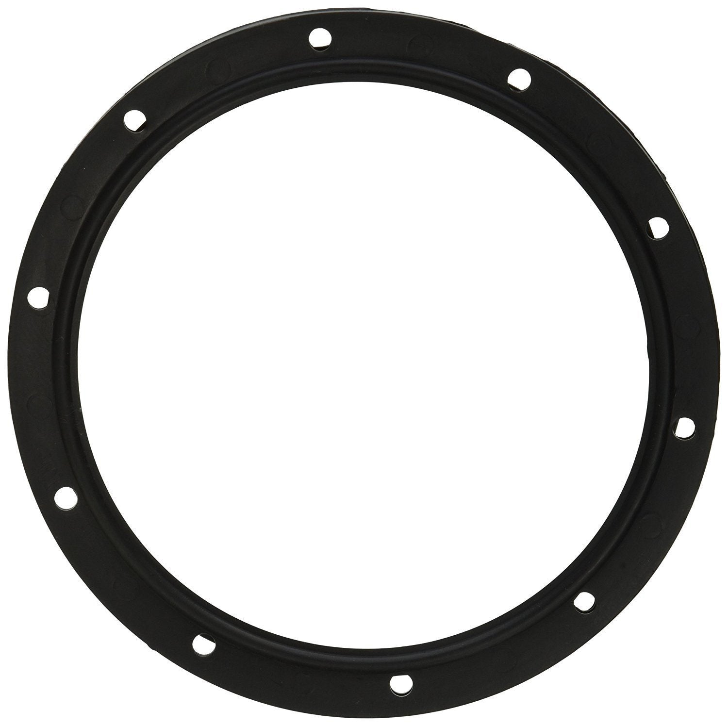 Sta-Rite Lens Gasket 05057-0118 Swimquip 10 hole Home & Garden > Pool & Spa Sta-Rite
