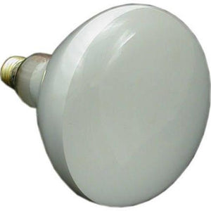 Swimming Pool Bulb 500 Watt 110 120V 500 Watts 120 Volts Home & Garden > Lighting > Light Bulbs Pentair