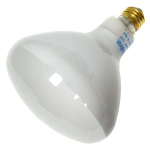 Swimming Pool Supplies - R40 - Medium 500 Watt Base Light Bulb, 120V Home & Garden > Lighting > Light Bulbs Sta-Rite